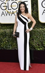 rs_634x1024-170108161839-634-julia-louis-dreyfus-golden-globe-awards